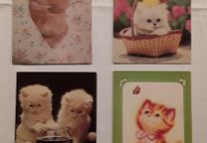 Conjunto de 4 postais de gatos, anos 80
