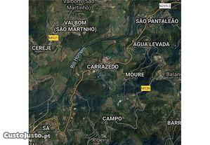 123001108-19 Terreno Rústico terras de Bouro