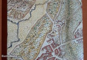 Descrição e História do Reino das Canárias