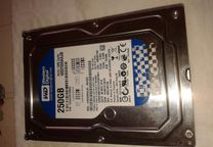 disco rigido western digital IDE 250 GB BAIXOU