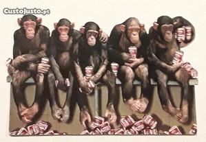 Postal com macacos, anos 80