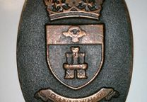 Medalha de bronze SINTRA