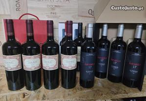 Vinhos Alentejo e Douro