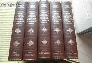 Grande Dicionário da Língua Portuguesa-13 volumes