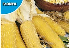 Sementes milho pipocas e milho doce