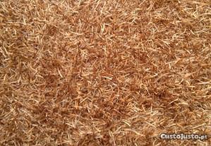 Carpete Grande