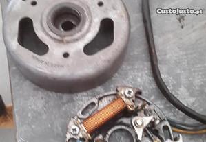 Parte eléctrica motoplat