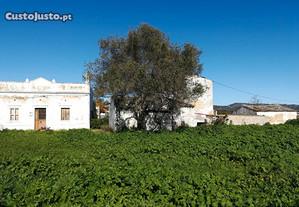 Quinta com ruina e terreno de 22320m2 na Conceição