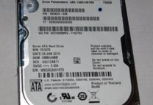 Western Digital 750GB e 500 (WD7500KMVV)