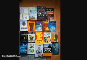 Vendidos EM SEPARADO - Livros Baratos - Lote 13 PS
