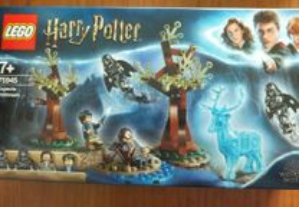 75945 Lego Harry Potter - Expecto Patronum