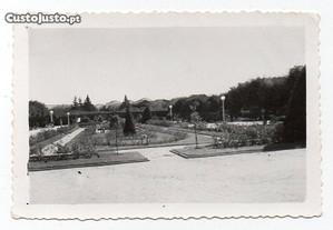 Castelo Branco - fotografia antiga (c. 1950)