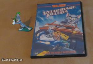 Personagem Tom, da série Tom e Jerry + Oferta DVD