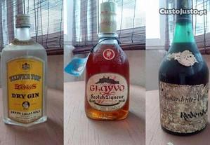 Conjunto bebidas antigas - whiskey, gin, etc