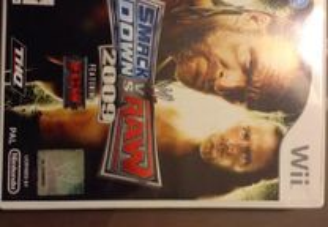 Jogo Wii SmackDown vs RAW 2009