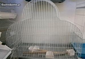 Gaiola de papagaio nova