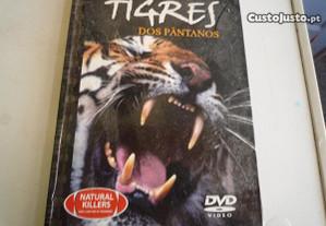 Dvd com Livro Tigre Dos Pantanos Novo