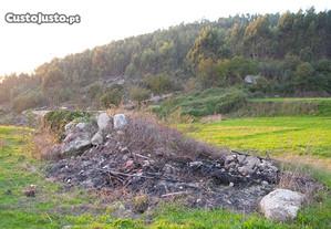 Terreno florestal e agrícola em Guimarães
