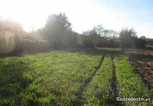 Terreno agrícola Barroselas