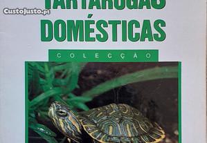 Tartarugas Guia das Tartarugas Domésticas
