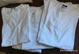 Lote 5 t-shirts básicas (M)