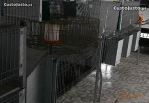 jaula para coelhos ou galinhas