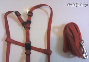 Trela+cinta para raças pequenas ou pequenas medias