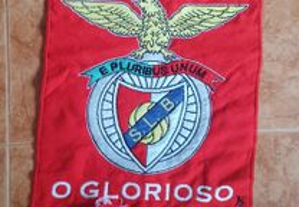 Galhardetes Benfica