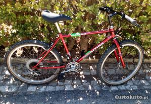 Bicicleta Esmaltina 24