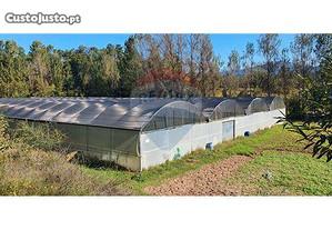 123001096-110 Terreno para cultivo com uma estufa