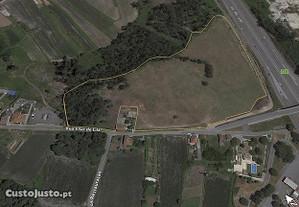Trofa: terreno (5,9 ha), junto da A3/empresa BIAL.