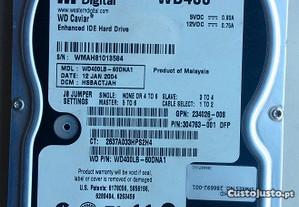Disco Western Digital 40 Gb 3.5