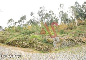 Terreno Rústico em Santa Eulália - Vizela