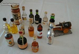 Coleção de 16 mini garrafas várias marcas