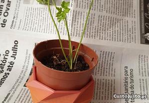 Base colorida p/ vaso de plantas, ervas aromaticas