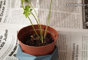 Base colorida para vaso plantas / ervas aromaticas