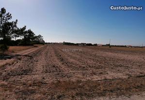 Terreno 21500,00 m2