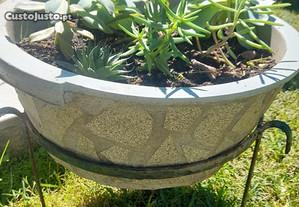 Vasos com planta e tripé