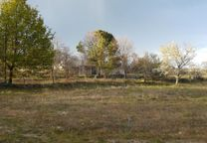Terreno em Mangualde