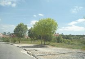 Terreno c/ área bruta de const. 1232 m2 - 100%Fin.