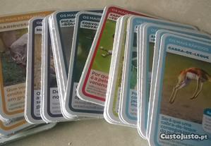 Complete a coleção - Pingo Doce Super animais 1