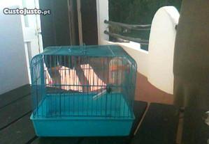 Gaiola para hamster(ratinhos da índia)