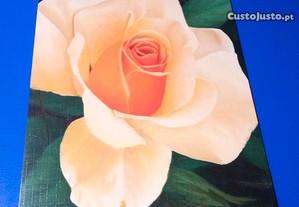 Colecção de 10 postais de flores