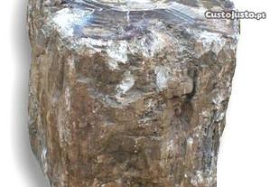 Tronco de madeira fossilizada 100kg - 36x46x32cm