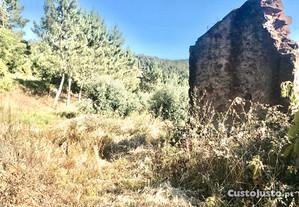 Terreno com 9900m2 na Abelheira, Almalaguês