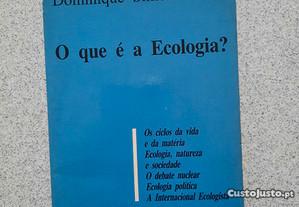 O Que é a Ecologia? (portes grátis)