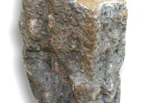 Tronco de madeira fossilizada 35kg - 33x31x22cm