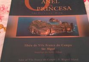 O Anel da Princesa