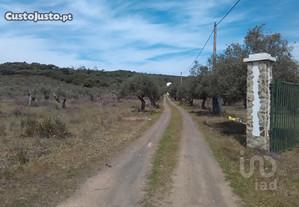 Terreno Elvas