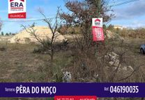 046190035 - Terreno em Pêra do Moço